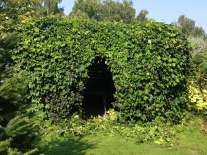 Беседка-пергола в винограде