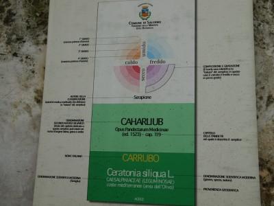 Этикетки растений в медицинском саду