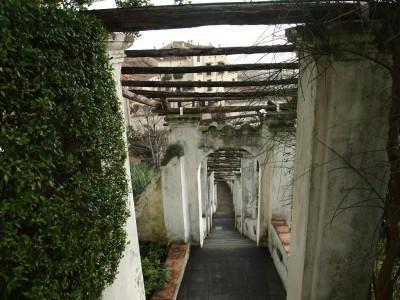 Пергола в саду Минервы