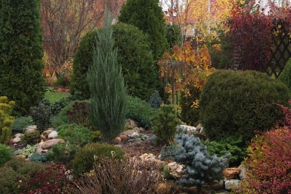 Рокарий Gardenschool Осень