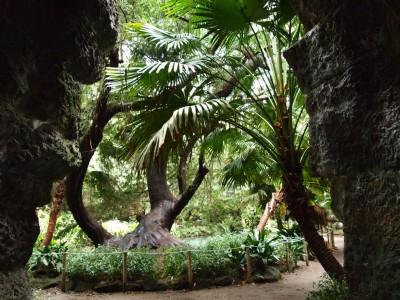 Романтический уголок в Английском саду