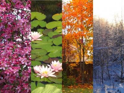 Весна, лето, осень, зима