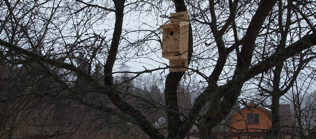 Скворечник-мухоловочник в саду
