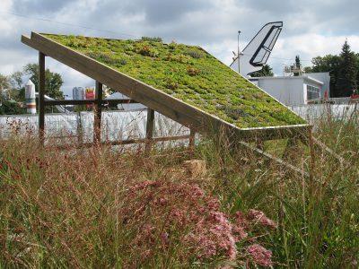 Шалаш с зеленой крышей