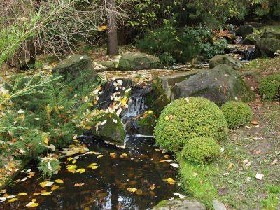 Вода в японском саду