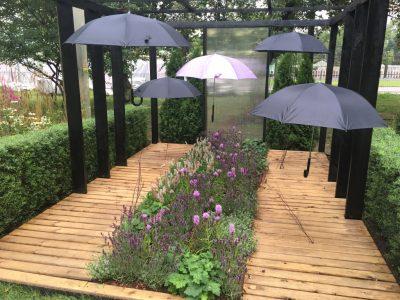 Сад Продавец дождя