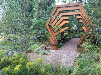 Сад Современный сад юрского периода