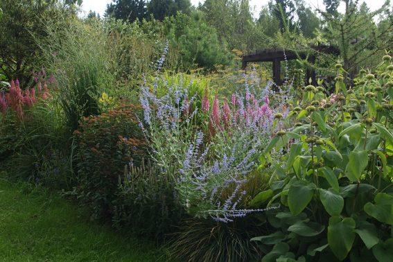Gardenschool
