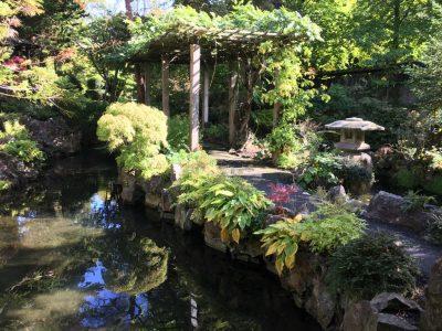 Японский сад Ирландского Национального Конного Завода