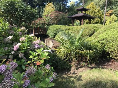 Японский сад Powerscourt Gardens