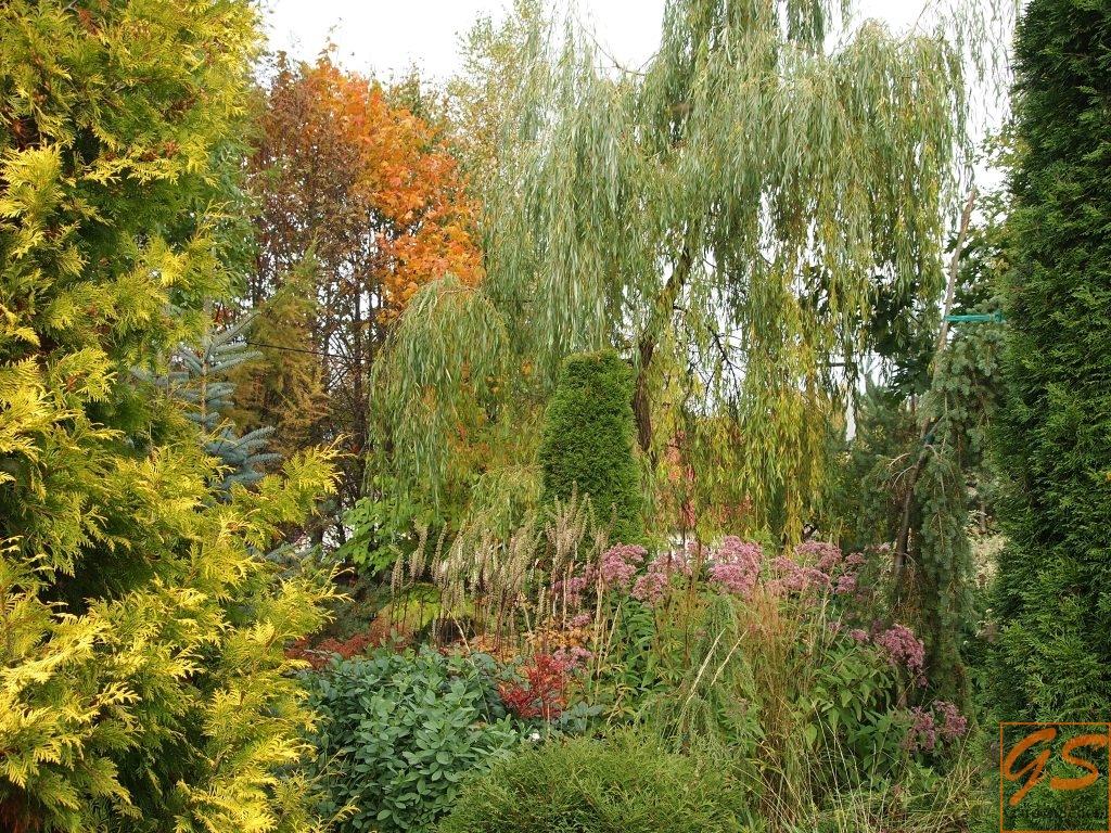 Календарь садовода на октябрь 2017