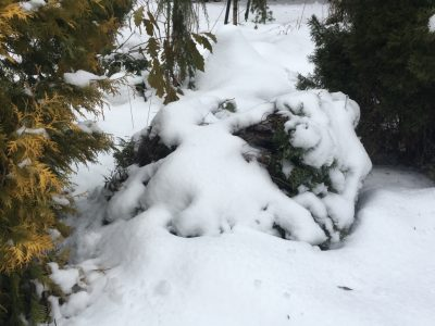 укрытие снегом