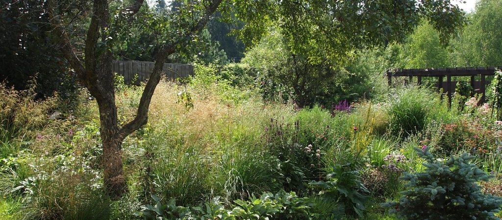 Прогулка по саду