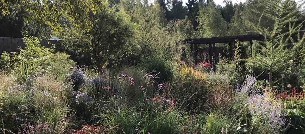 Календарь садовода на сентябрь 2018
