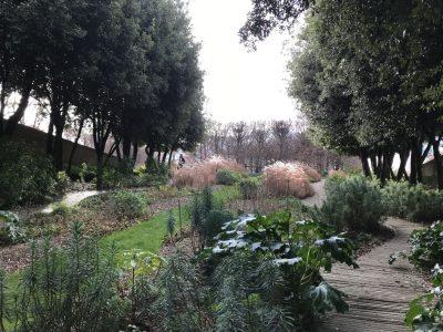 Боскет Юпитера или Зеленый сад