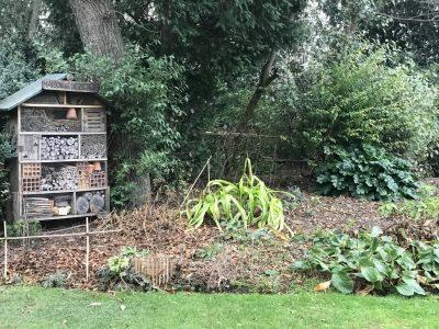 Домик для насекомых в Люксембурском саду