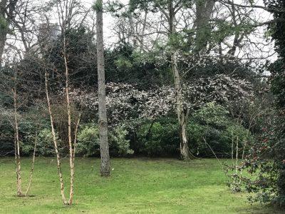 Люксембурский сад имеет много интересных уголков