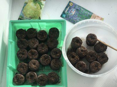 Торфяные таблетки для семян