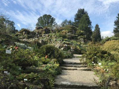 Альпинарий ботанического сада Мюнхена