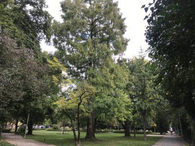 Мюнхенский городской парк