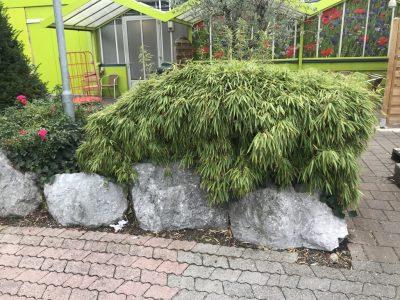 Садовый центр в Мюнхене