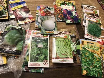 Инвентаризация семян