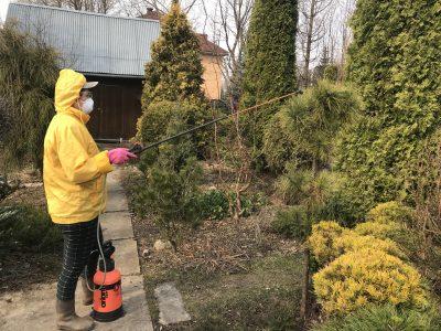 Обработка сада от вредителей